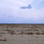 MAPP Webinar Series: Drought Understanding, Monitoring, and Prediction