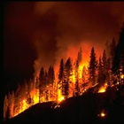 RISAs Support 2011 National Seasonal Assessment Workshop, Help Produce Wildfire Forecasts