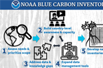 CPO Produces NOAA Blue Carbon Inventory Project Briefing Sheet