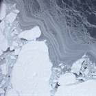 Understanding Arctic Sea Ice Mechanisms and Predictability