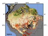 MAPP supports PNAS-published research on risks of Amazon Rainforest dieback